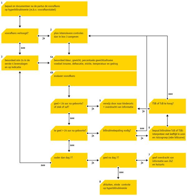 Babyzietgeel Verloskundige Hulpverlener Hulpmiddelen